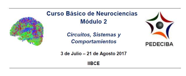 Encabezado, curso Neuro