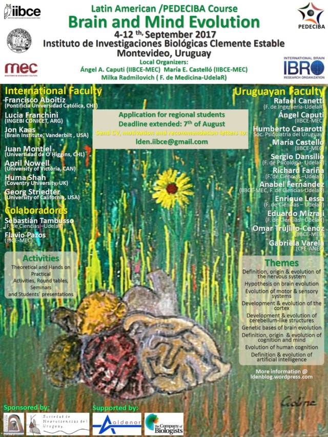 Afiche Curso Brain and Mind Evolution Deadline extended
