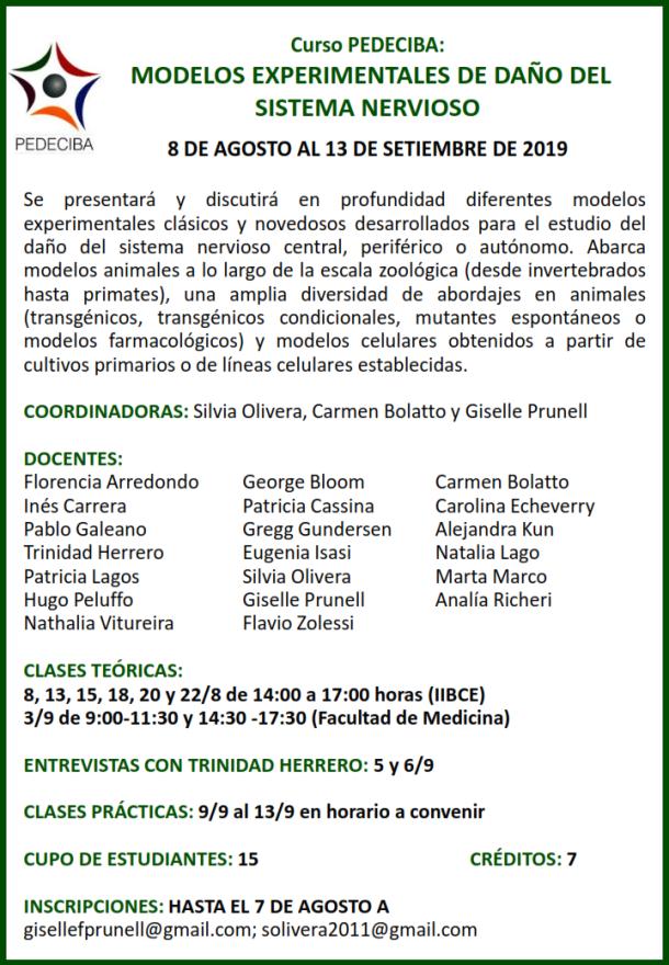 curso2019.png